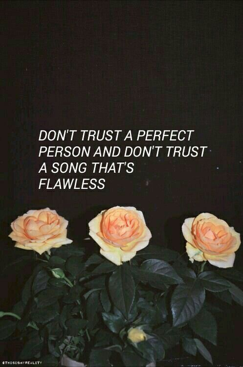 ✌︎pinterest: iidonuttcaree stay bold, stay gold, and stay away from me. ANDY BIERSACK!