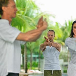 Tai Chi and Chi-Gong (Qigong) for Fibromyalgia