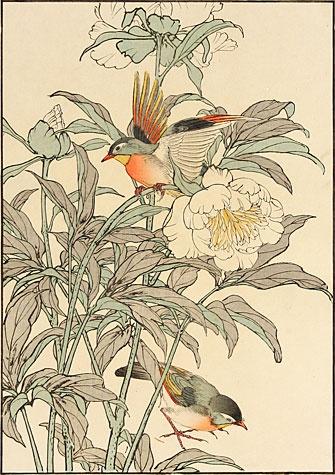 Imao Keinen (1845 - 1924): Peonies and Birds