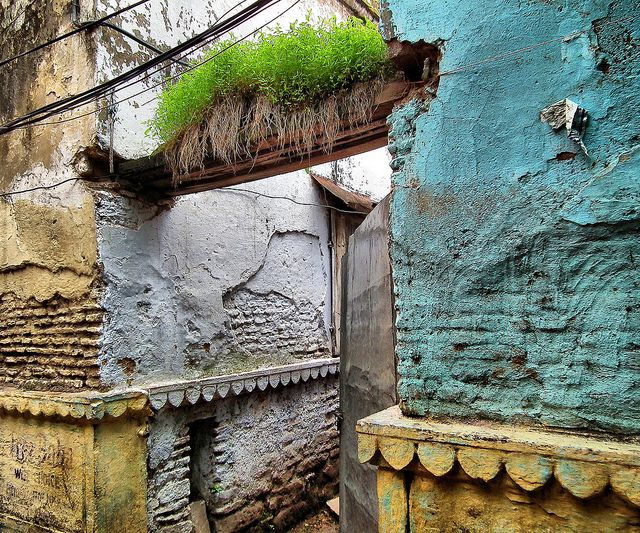 India, beautiful decay, green and blue and yellow