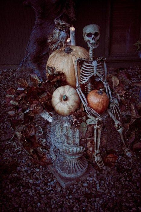 outdoor halloween skeleton decoration love the owl on the pumpkins