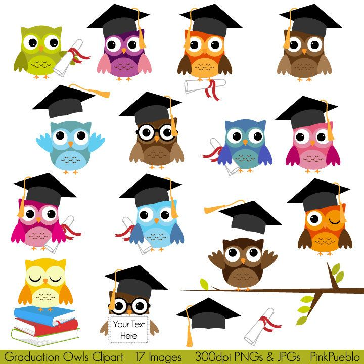 Graduation Owls Clipart Clip Art, Education School Owls Clipart Clip Art - Commercial and Personal