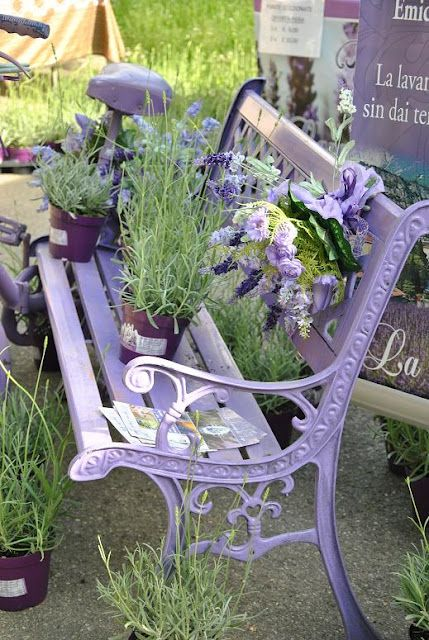 Lavender the plant and lavender the colour on a metal garden bench, wonderfully pretty look with a gorgeous aroma to match . . .