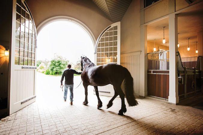 martha stewarts farm | ... George Kamper shoots Martha Stewart's Farm for Equestrian Quarterly   Beautiful Barn