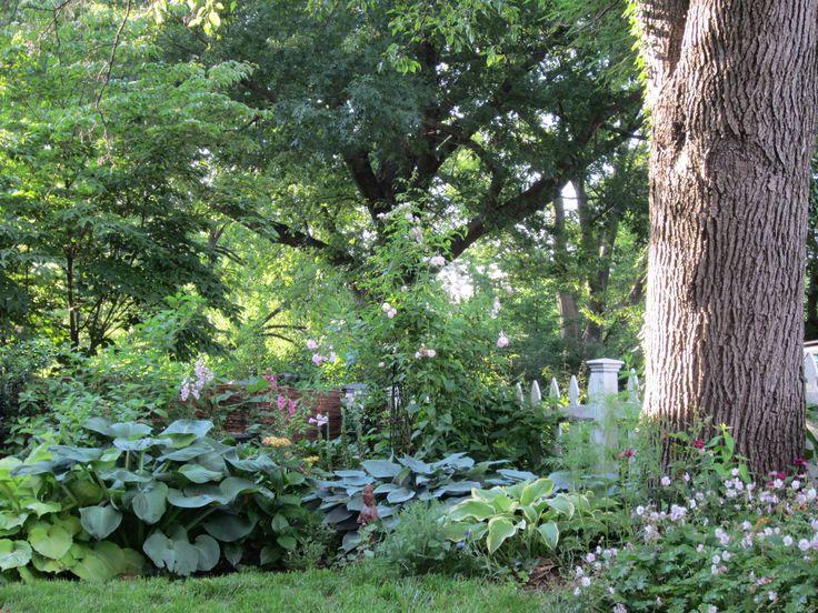 62 Besten Country Cottage Gardens Bilder Auf Pinterest