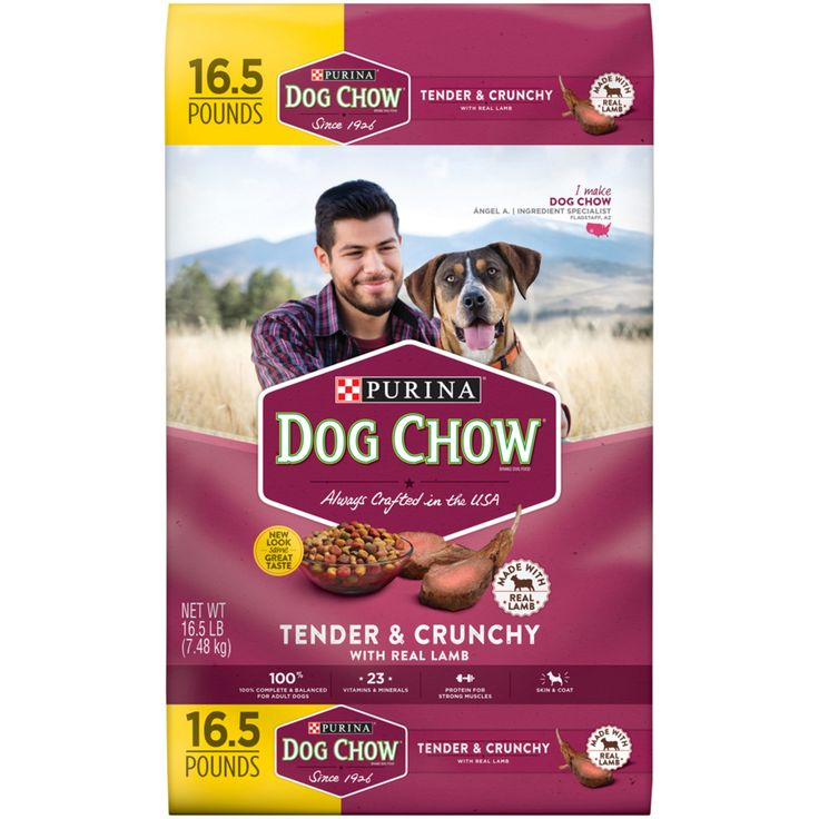 Purina Dog Chow Tender & Crunchy Dog Food - 16.5lbs