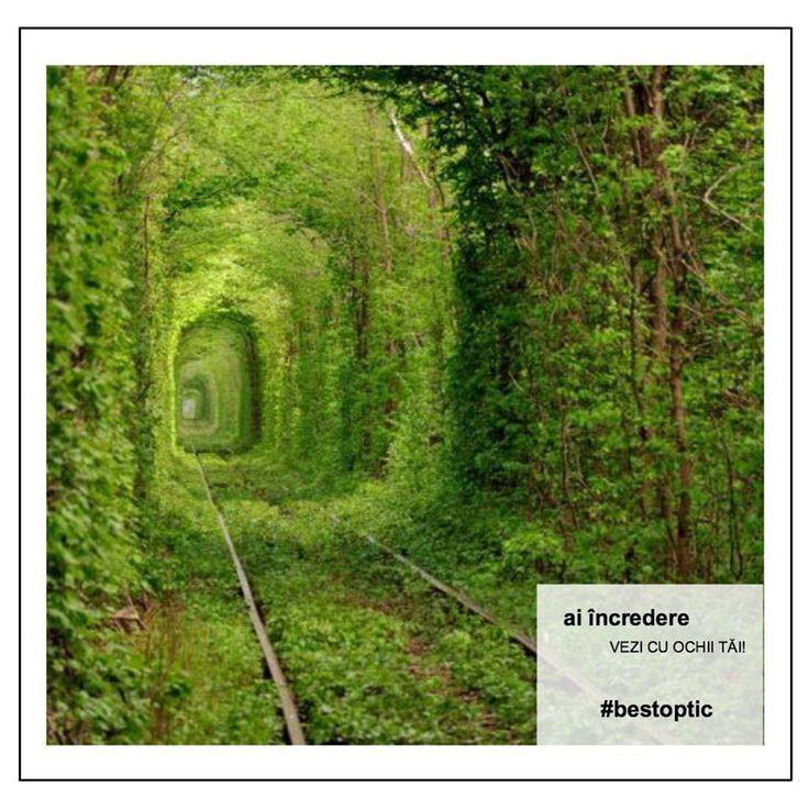 Ți-ai făcut planuri pentru weekend? Un loc #devazut în România este Tunelul Iubirii. Este situat pe calea ferată Caransebeş - Băuţar, între localităţile Obreja şi Glimboca și a fost descoperit întâmplător de doi fotografi amatori. Răsfăț pentru retină :) Foto: radiocluj.ro #bestoptic #vacanta