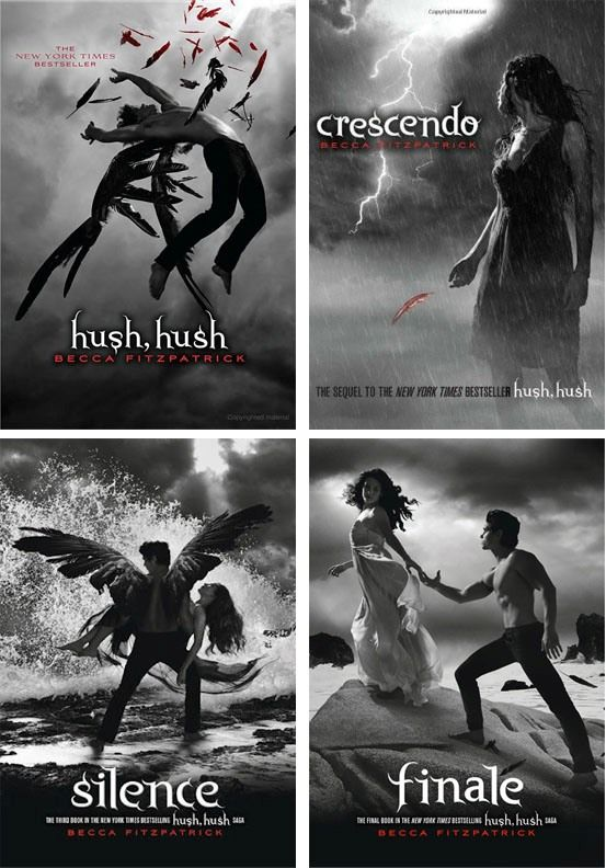 Hush, Hush Series by Becca Fitzpatrick :) THE BEST BOOK SERIES EVER! I highly recommend it :)
