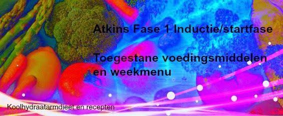 Atkinsdieet   De eerste 2 weken van Fase 1 worden inductie of startfase genoemd. Dit is een snelle start van je gewichtsverl...