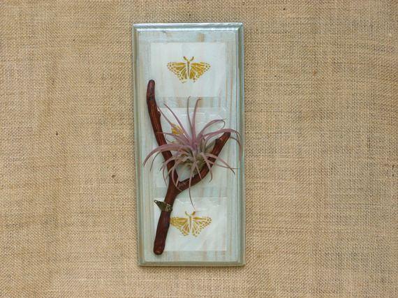 les 25 meilleures id es de la cat gorie plantes a riennes sur pinterest accrocher les plantes. Black Bedroom Furniture Sets. Home Design Ideas