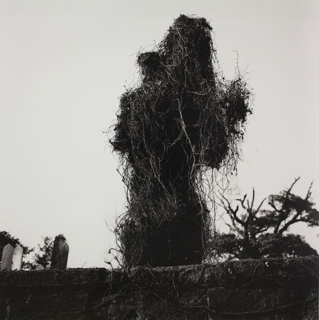 Yanaka, 1976, by Issei Suda