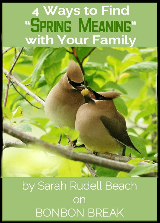 4 Ways to Find 'Spring Meaning' with Your Family by Sarah Rudell Beach Best Parenting Tips,#kids, Ways to be a better parent