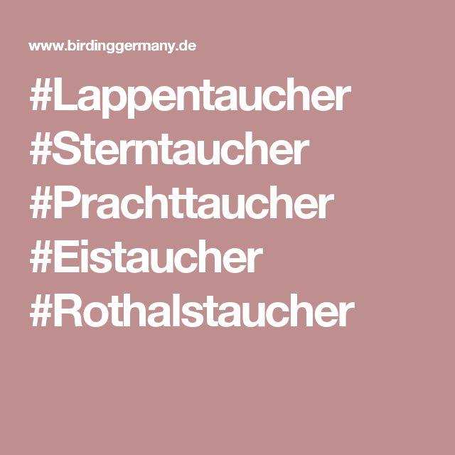 #Lappentaucher  #Sterntaucher  #Prachttaucher  #Eistaucher  #Rothalstaucher