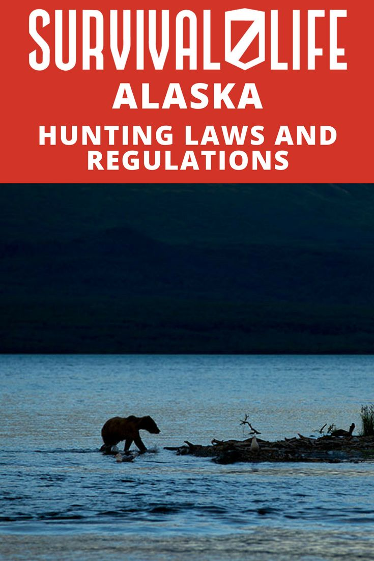 Survival skills 12914 pinterest for Alaska out of state fishing license