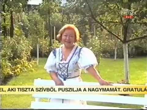 Cseh Judit: Mikor idegenbe visz néha az élet