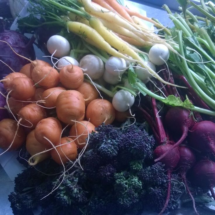 Brendan Guinans In Season farm vegetables , picked today and on the plate this evening.