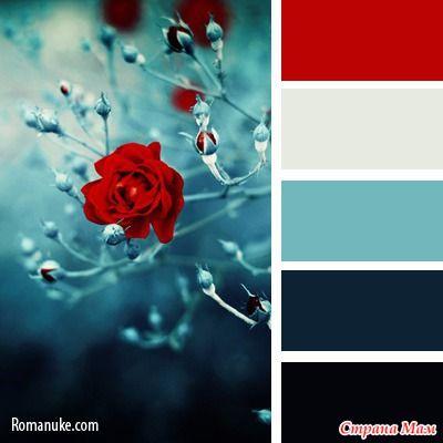 Цветовая палитра для творческих...: Альбомы - Страна Мам