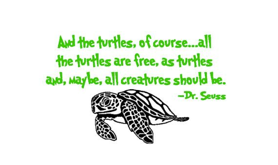 Dr Seuss And The Turtles Of Course with Sea by IndigoChicCreations, $38.00