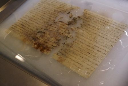From the Collection Care blog post 'Conserving a mould damaged iron gall-ink manuscript'.