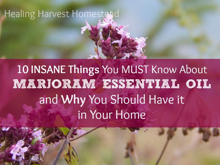 10 INSANE Things You MUST Know About MARJORAM Essential Oil: Why You Need it in Your Home!  https://www.healingharvesthomestead.com/home/2017/5/31/insane-things-you-must-know-about-marjarom-essential-oil-why-you-need-it-in-your-home  Heidi Villegas
