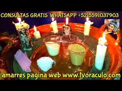 SAL Y PIPI NO VIVIRÁS SIN MI - AMARRES PODEROSOS - REGRESO DE PAREJA - YouTube