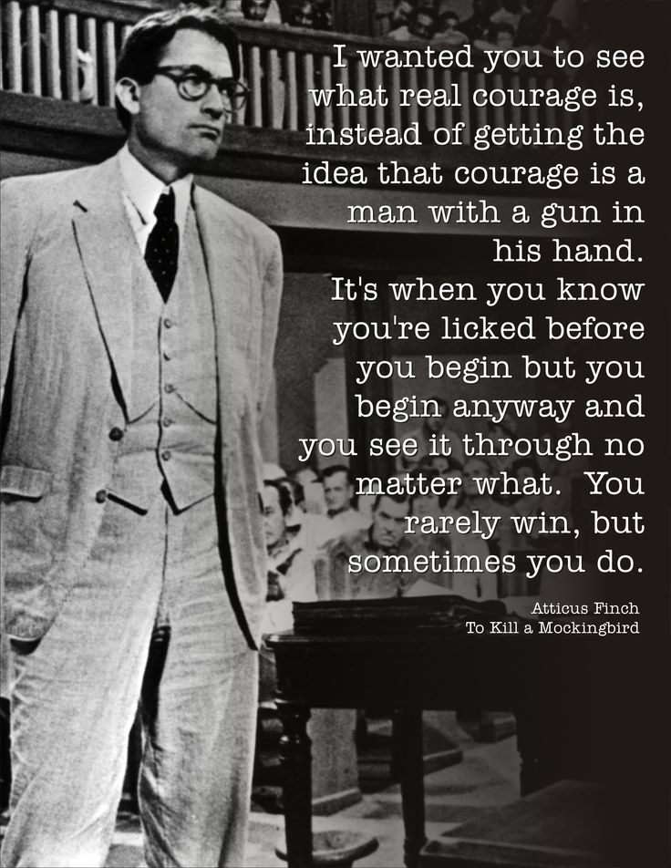 To Kill a Mockingbird (Atticus Finch's closing speech)