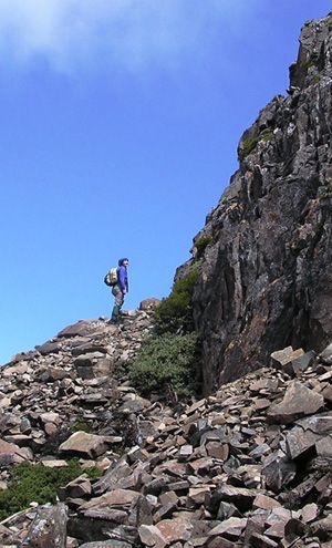 Before You Walk | Essential Bushwalking Guide