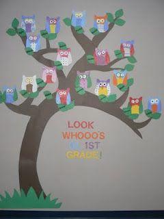 : Back To Schools, Classroom Owl, Bulletin Boards, Owl Theme, Owl Classroom, Boards Ideas, Classroom Ideas, First Grade, 1St Grade