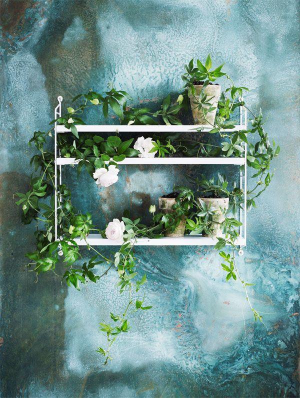 De String pocket wandkast kan je ook gewoon in de tuin hangen. Bloemen aan de muur fleuren de tuin direct wat meer op!