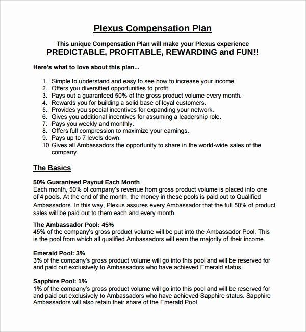 Sales Compensation Plan Template Beautiful Sample Pensation Plan Template 8 Free Documents In How To Plan Business Plan Template Free Business Budget Template