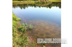 10 Pond Management Tips Learn the pond management tips to successfully create your own fishing pond. -
