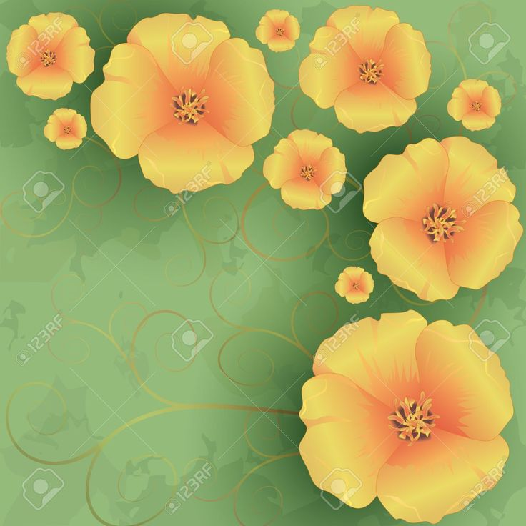 Vintage Floral Green Background With Flowers Golden California ...