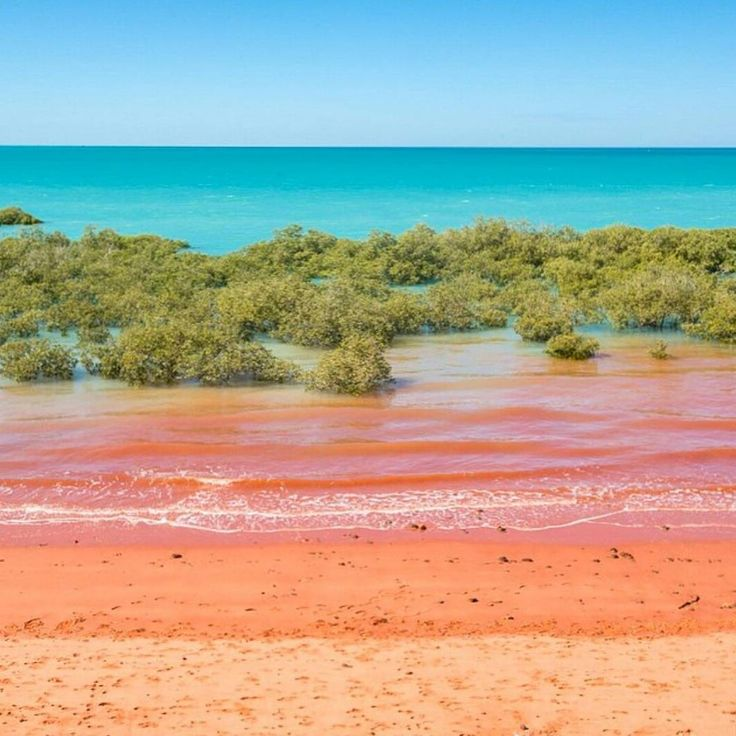 "The Kimberley, Australia on Instagram: ""An incredible contrast of colours. This is Roebuck Bay at high tide in Broome. Photo: @shotbygrace_. Thank you for tagging us! Tag #thekimberleyaustralia to be featured."""