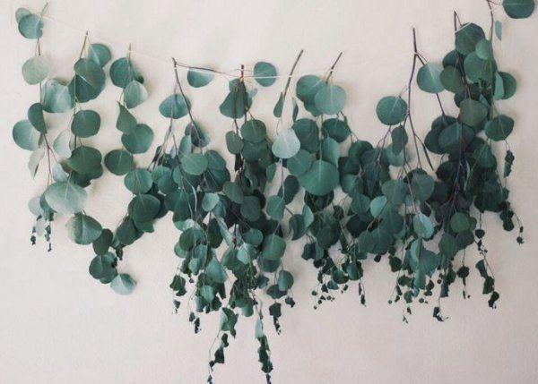 L'Eucalyptus, on l'aime touffu, foisonnant, mais lorsqu'on le prend une branche par une branche, la végétal révèle une autre beauté. Alors on aime l'idée d'aligner les branches en les suspendant à un fil pour créer une guirlande qui fera office de décoration murale revisitée, en tête de lit ou dans une entrée pour donner le ton.