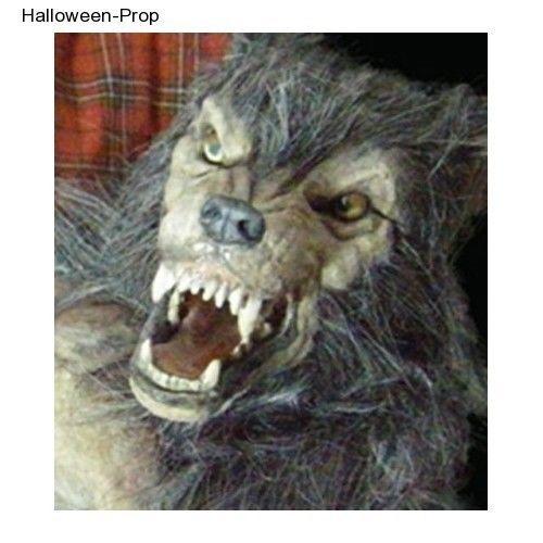 baby werewolf puppet movie collector halloween decoration haunted house prop