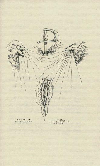 25 melhores ideias sobre michel leiris no pinterest for Andre caplet le miroir de jesus
