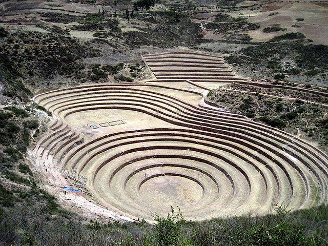 https://flic.kr/p/7gzx8C | Moray , cultures en terrasses , | Pour les archéologues de ce lieu, Moray était probablement un centre d'investigation agricole des Incas. La disposition des terrasses produit des microclimats permettant de tenir les cercles à une température élevée et limitant les fortes variations de chaleur. Une vingtaine de microclimats différents ont été enregistrés.  On pense que Moray a pu servir de modèle pour le calcul de la production agricole non seulement de la vallée…