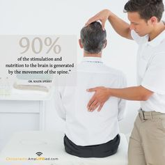 If you're living in the Mount Wellington area, then the perfect solution for your pain is just a quick call away. At Functional Health Chiropractic, we are here to offer you the finest in services and chiropractic care as your local #chiropractor #Mount #Wellington.