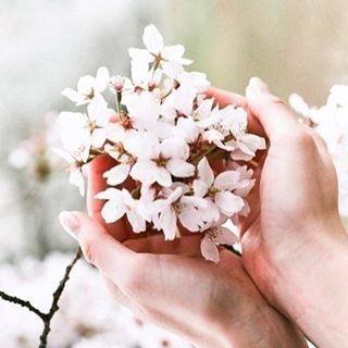 Доброе утро,весна!