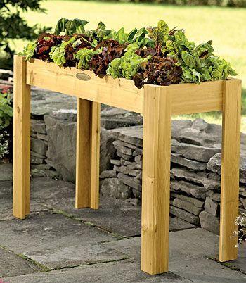 Install Garden Beds