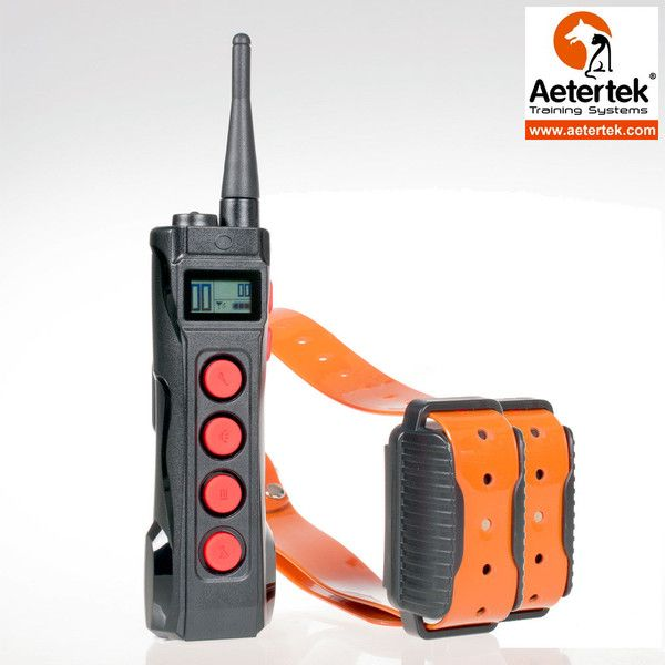 Electronic Collars For Deaf Dogs