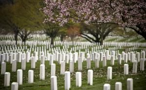 What to See and Do at Arlington National Cemetery