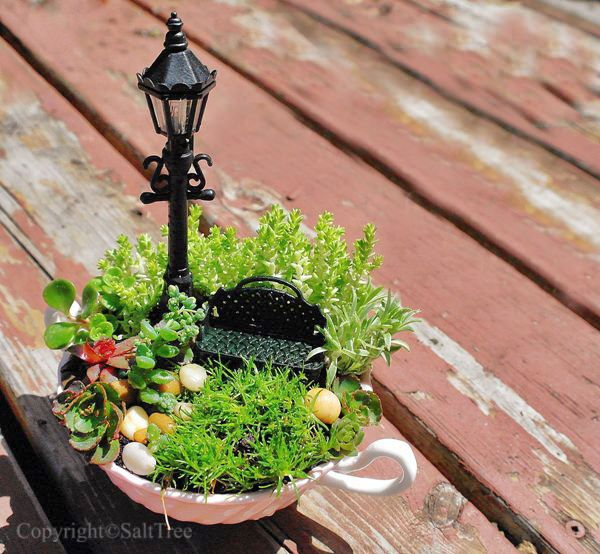 I'd love to do the tea cup inside our terrarium and have a ladder leading to it!