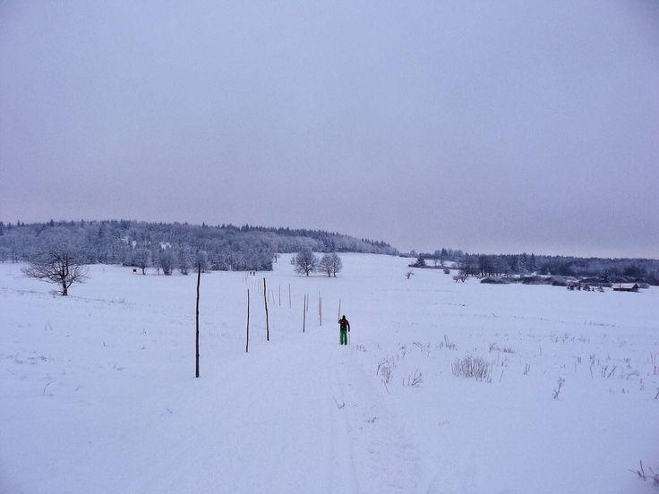 #naturelovers #klubkocestuje #snow #trip #crosscountryskiing Už opravdu nestíháme!Ještě asi 5km k autu!⛷🎿❄️🗻