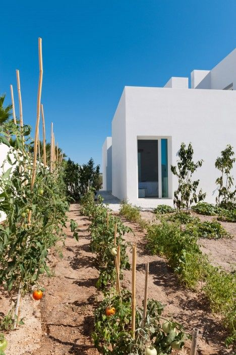 Summer House in Santorini by Kapsimalis Architects is comprised of cubistic white volumes
