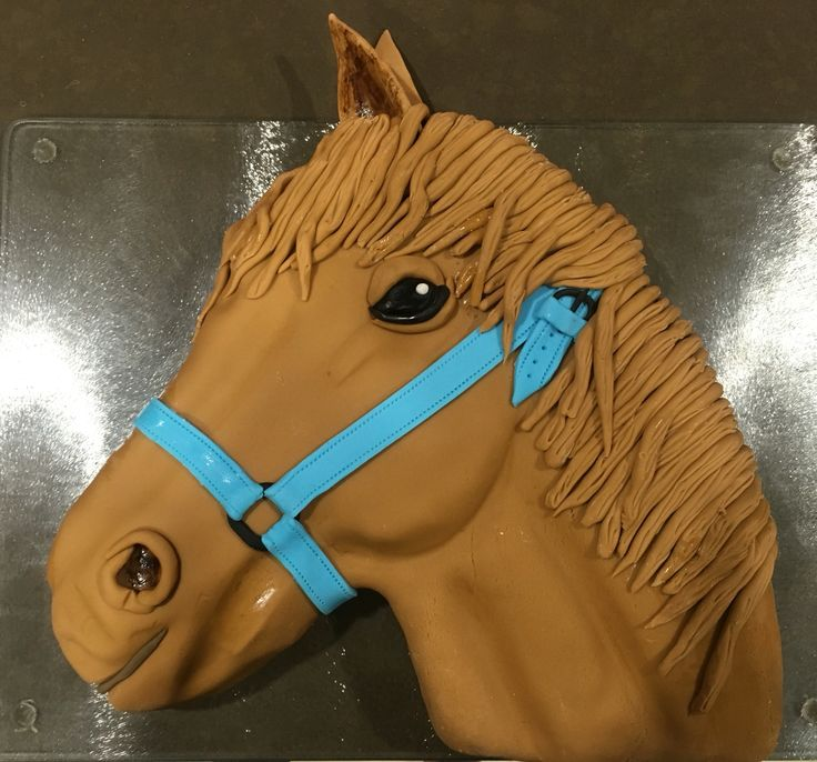 Horse Cake for the Equestrian Enthusiastic Kid