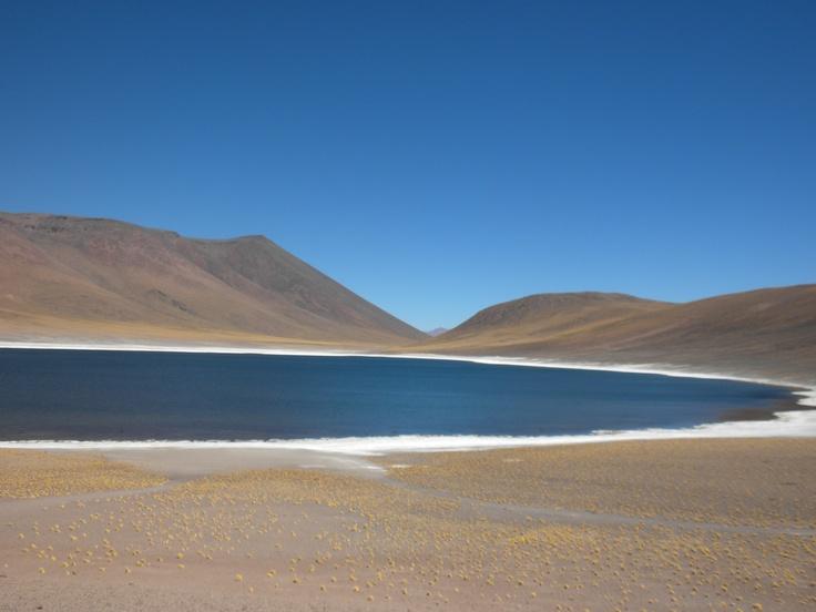 Lagunas altiplánicas, San Pedro de Atacama, Chile