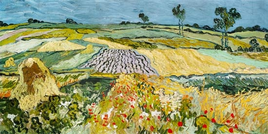Vincent van Gogh - Fields at Auvers