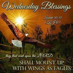 ~Isaiah 40:31~ KJV