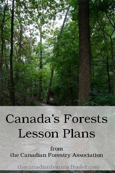 From the Canadian Forestry Association, lesson plans to teach kids about Canada's Forests